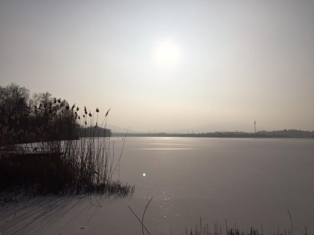 Kühlsee 2017 in Sandweier